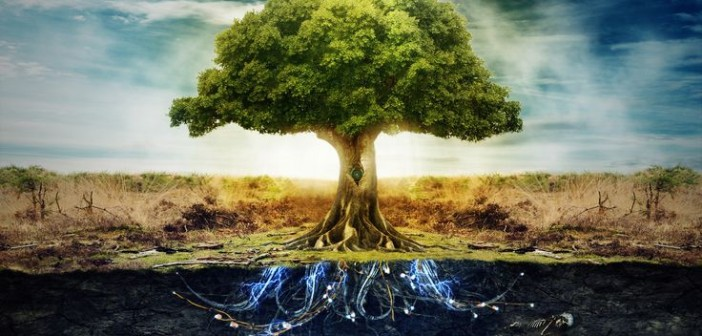 Kairòs: percorso di consapevolezza integrato