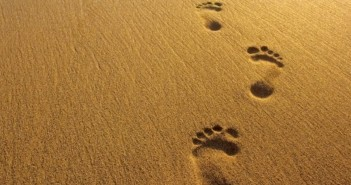 footprints-in-the-sand-163312 (1)